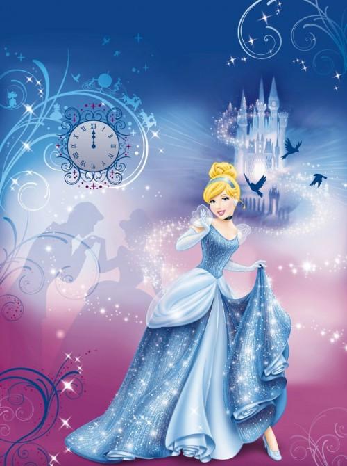Cinderellas Night