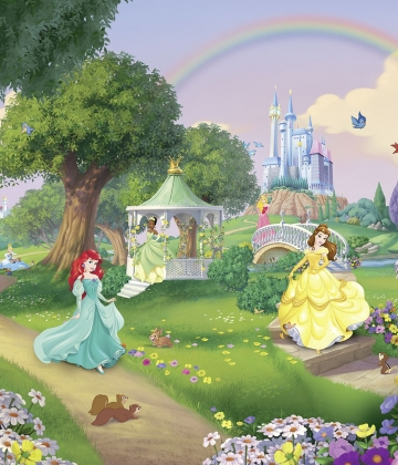 DISNEY PRINCESS RAINBOW