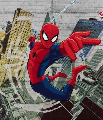 Spider Man Concrete